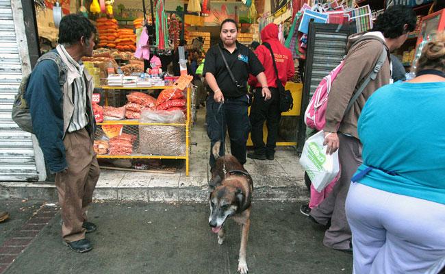 Decomisan media tonelada de cohetes en Monterrey