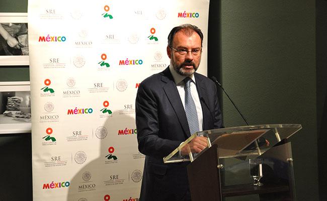 Entrega Videgaray primer acta de nacimiento a mexicana en NY