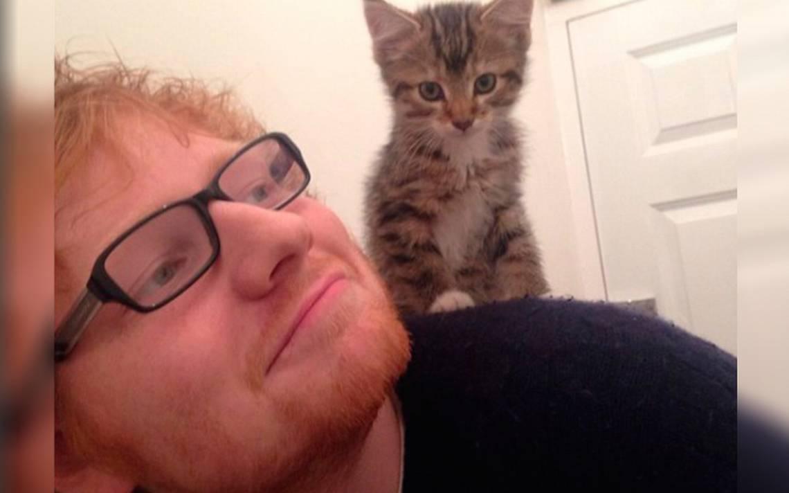 Ed Sheeran se une al club y abre cuenta de Instagram ¡a sus gatos!