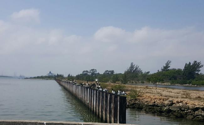 Buscan opciones para ampliar la operación del puerto de Tampico
