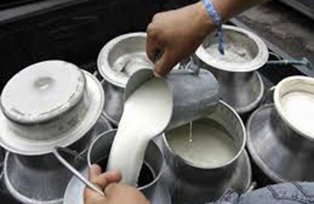 En el Día Mundial de la Leche, crecen 15% exportaciones mexicanas de leche