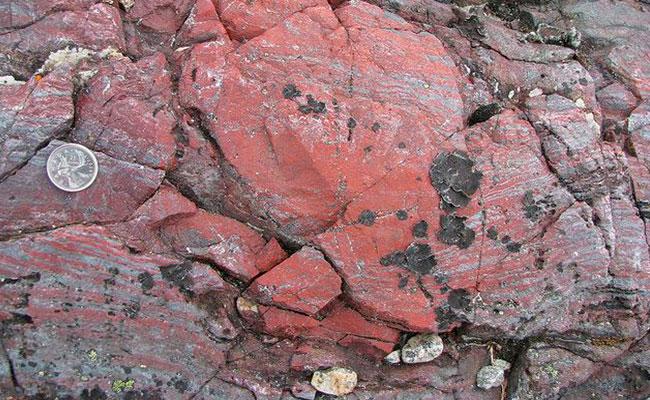 En rocas descubren microfósiles de ¡3 mil 770 millones de años de antigüedad!
