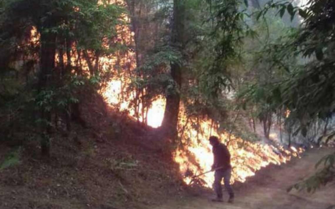 Combaten incendio forestal en Valle de Bravo