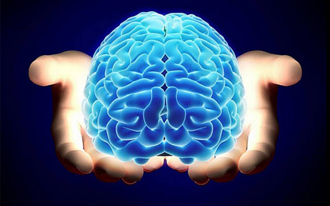 ¡No es ciencia ficción! Además de trasplantar cabezas también podrían trasplantar cerebros