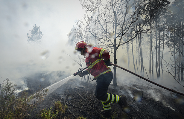 Portugal da por controlado último foco de devastador incendio