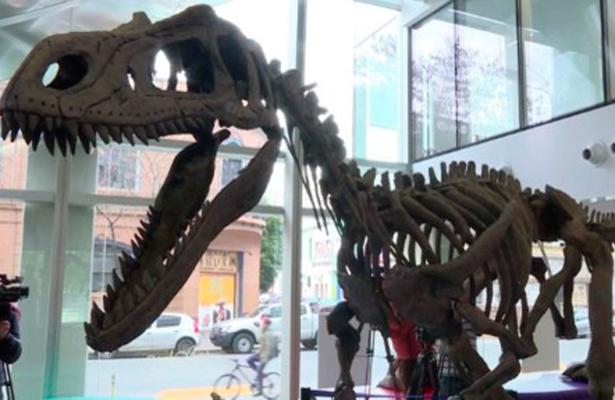 Cuadrúpedos, los primeros parientes de los dinosaurios