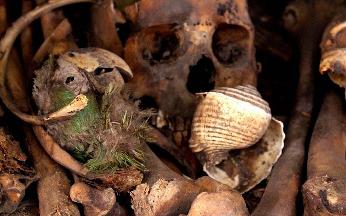 Guacamaya de 2 mil años encontrada en Chihuahua resguarda misterios prehispánicos
