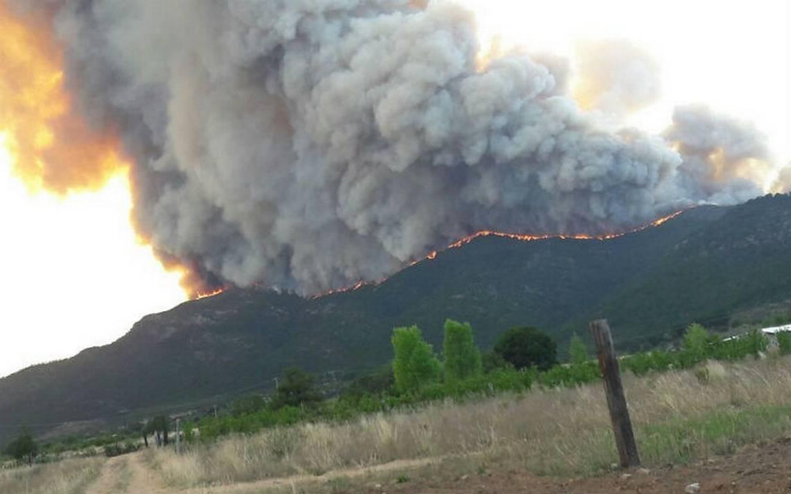 Incendio forestal afecta 600 hectáreas en Sierra de Arteaga, Coahuila