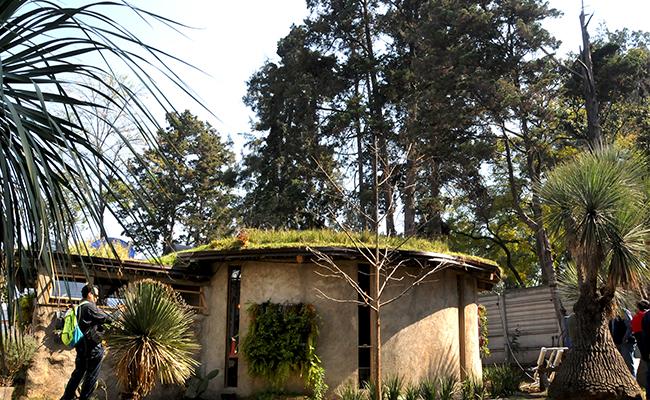 Desarrolla Delegación Tlalpan una Casa Sustentable económica no contaminante  y amigable con el Medio Ambiente