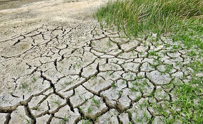 Enfrenta el cambio climático, conoce tu huella ecológica que afecta al planeta