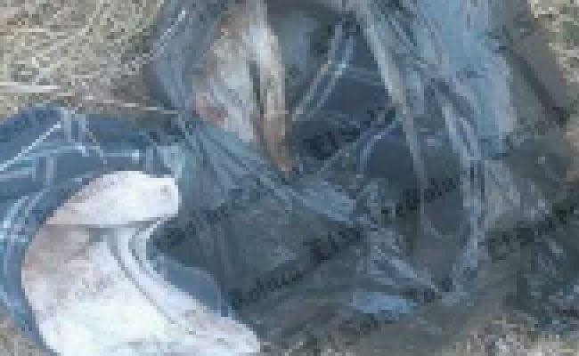 Encuentran cuatro fetos sin vida en el valle de Toluca