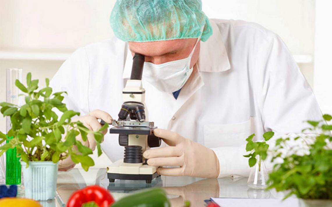 TecnologA�a de alimentos para mejorar la salud