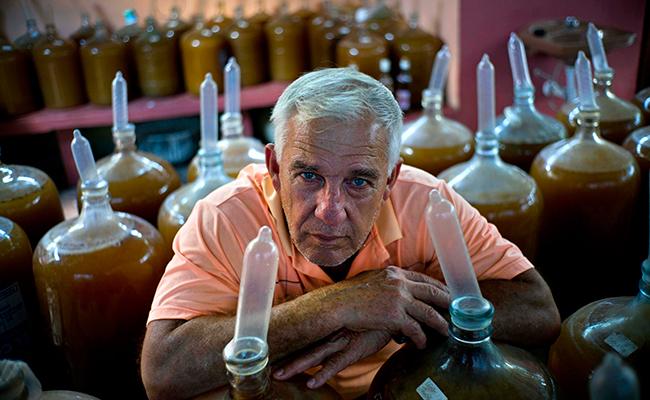 Usa frutas… y condones para hacer vino en Cuba