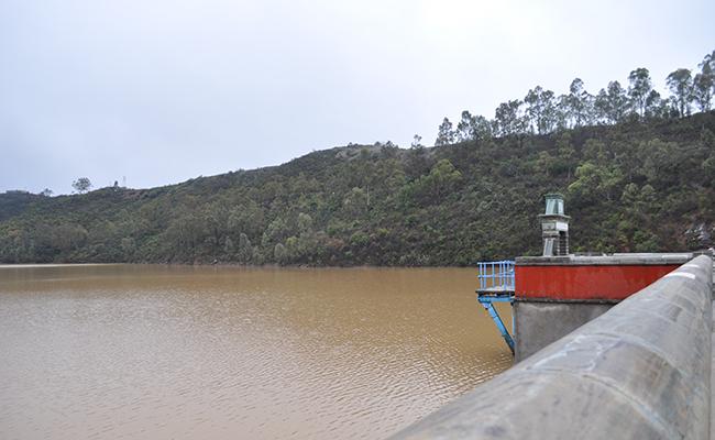 Favorecen lluvias  a Guanajuato