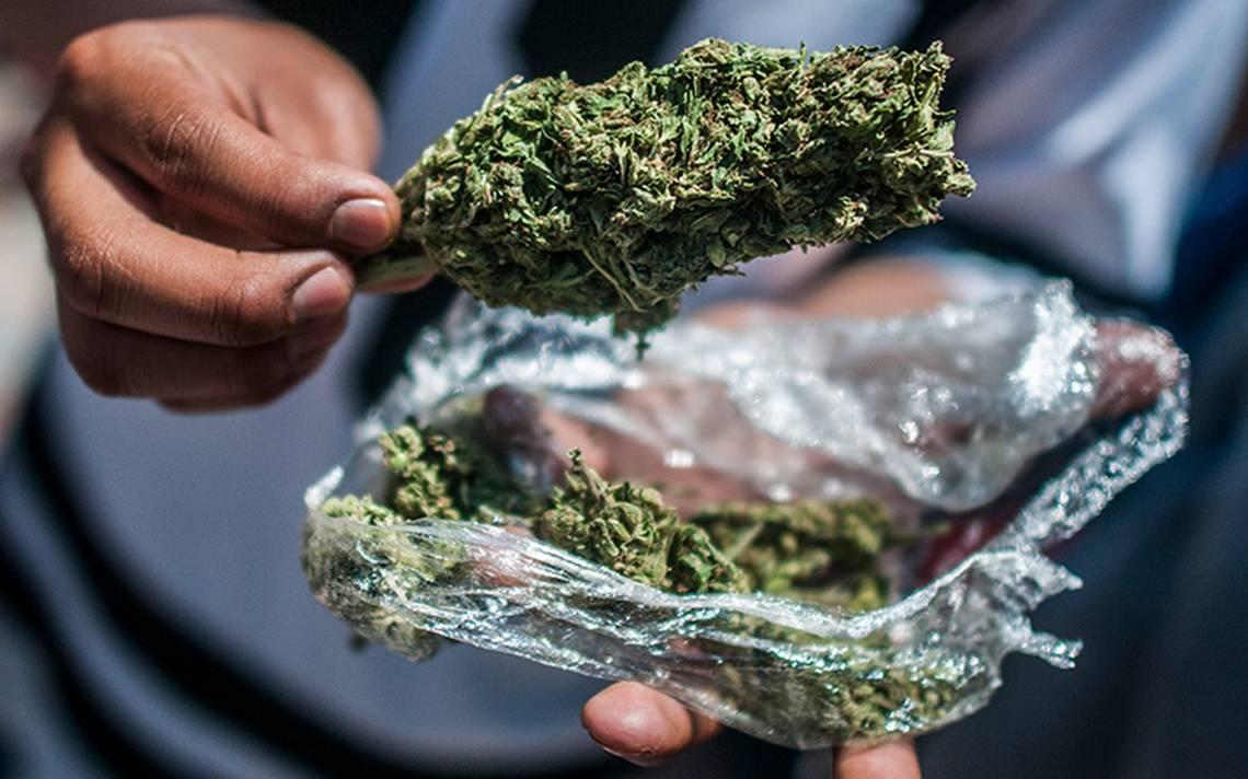 ONGs respaldan propuesta de AMLO de despenalizar drogas para pacificar el país