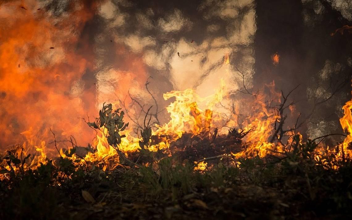 Crean sensores para evitar incendios
