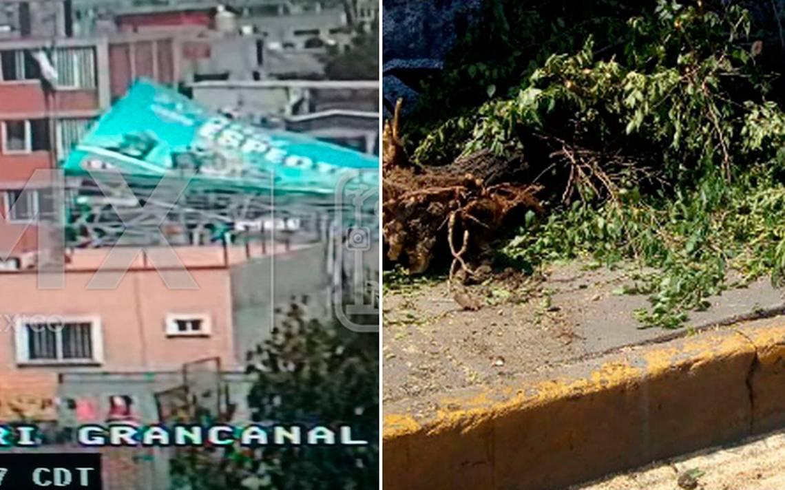 Fuertes vientos tiran espectacular en la GAM y un árbol en Iztapalapa