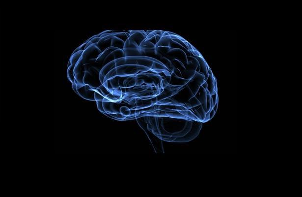 Estimulación cerebral favorece la honradez