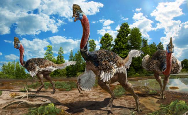Hallan en China nueva especie de dinosaurio con cresta en su cráneo