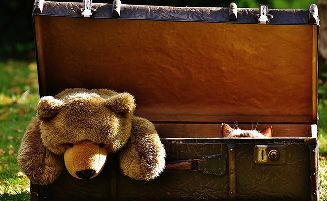Peluche mortal: oculta arma de fuego y es detenida