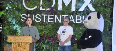 México, cada vez más afectado por el cambio climático: WWF