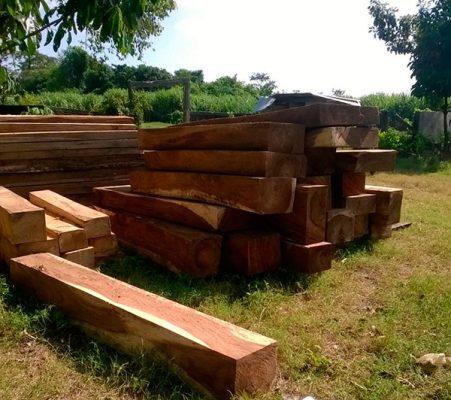 Continúa pseudolíder deforestando y  revendiendo predios en Escuintla y Acacoyagua