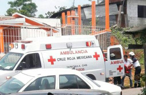 Atiende cruz roja a joven, cayó cuando podaba un árbol