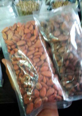 En peligro de extinción Cacao Real del Soconusco