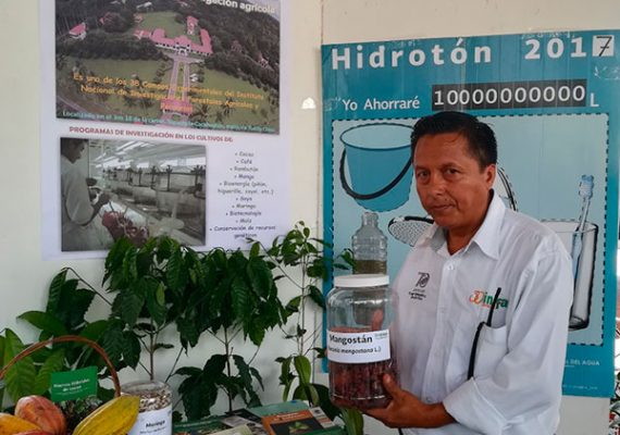 Comprueban propiedades anticancerígenas del mangostán