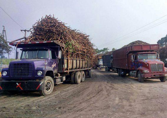 Ingenio de Huixtla adeuda 40 millones de pesos a cañeros