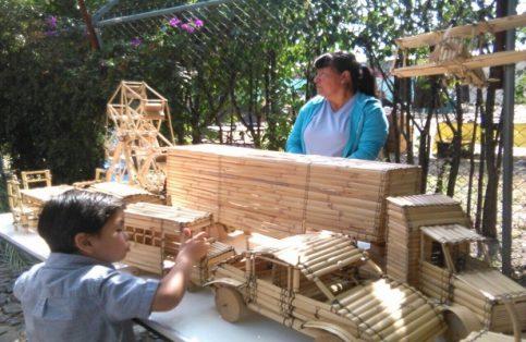 El uso de la especie Arundo donax o carrizo es múltiple, desde la producción de artesanías hasta en la construcción de vivienda, y desde luego en el mundo de la herbolaria y medicina tradicional.