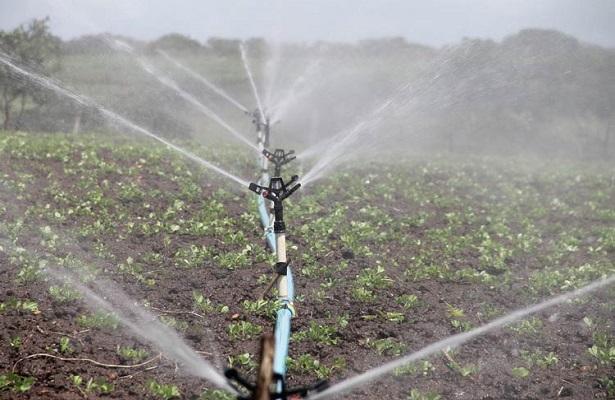 El suelo y el agua son fundamentales para el desarrollo del sector agropecuario, por ello la importancia de evaluar la calidad y factibilidad de ambos factores con la finalidad de garantizar la subsistencia alimentaria.