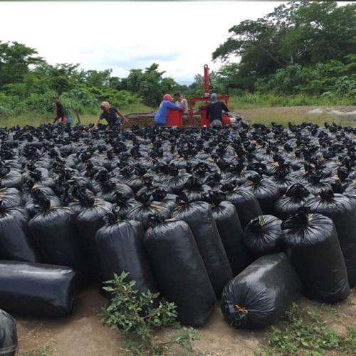 Ensilaje en bolsas plásticas se presenta como una alternativa viable para pequeños productores.