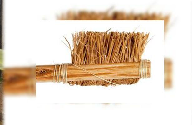 El origen del cepillo dental que actualmente conocemos fue hecho con raíces de la especie Salvadora Pérsica.