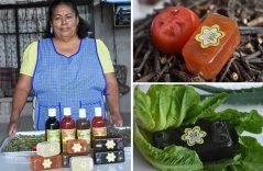 Jabones artesanales que recuperan herencia de plantas medicinales