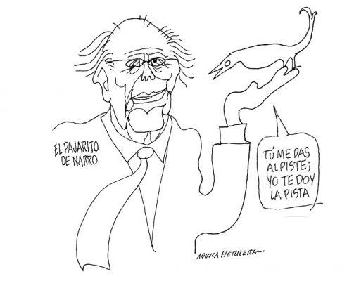 EL PAJARITO DE NARRO