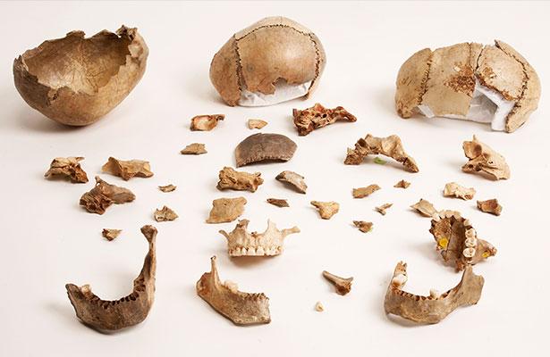 Cuenco y fragmentos de calavera de la Cueva de Gough (Foto: The Trustees of the Natural History Museum, London)