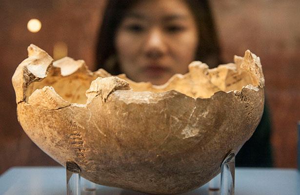 Copa de calavera de la Cueva de Gough Foto: The Trustees of the Natural History Museum, London