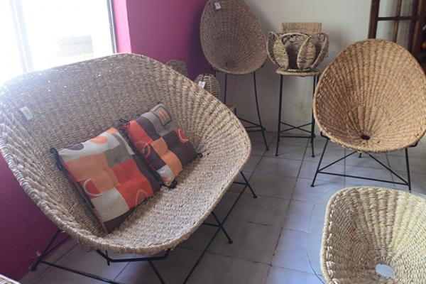Fabrican muebles y artesanías de Tule en Amealco