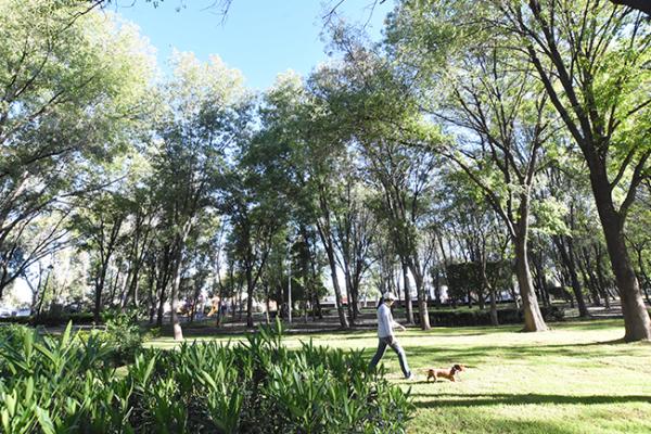 Rehabilitaron el parque Carretas