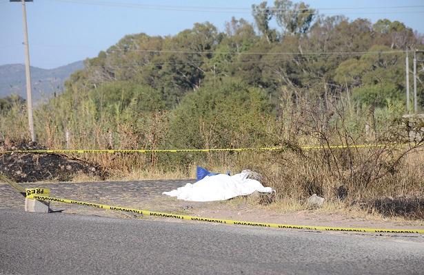 Abejas asesinan a un ciclista en San Germán