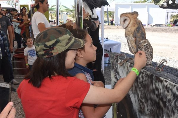 Día de los Animales en Gran Reserva PRESERVE