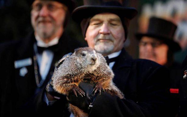 La marmota Phil predice un largo invierno en Estados Unidos