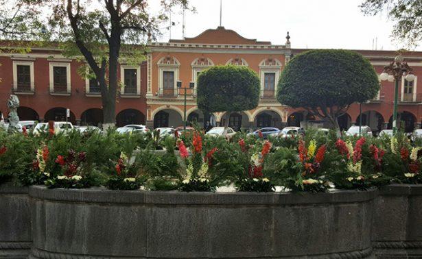 Amanece Parque Central de Tlaxcala con adornos florales por San Valentín
