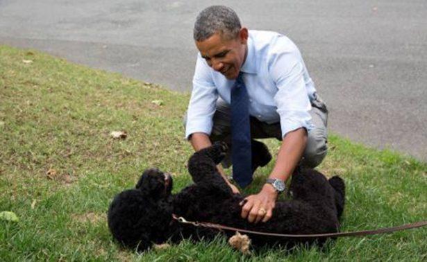 Sunny, la perra de los Obama, muerde a una chica dentro de la Casa Blanca