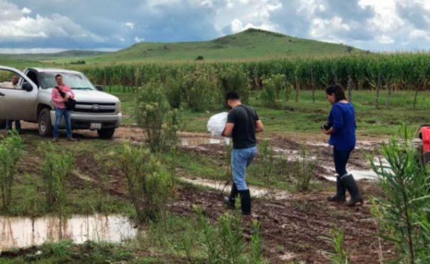Muere bebé arrastrado por la corriente en Chihuahua