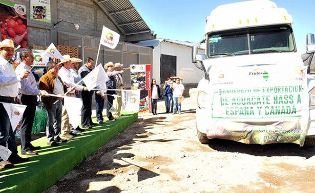 Banderazo de salida a exportación de aguacates mexiquenses a España y Canadá