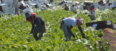 Sagarpa cubrirá rezago del 2016 en el Proagro