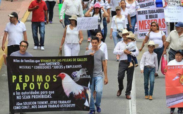 Marchan galleros contra veto