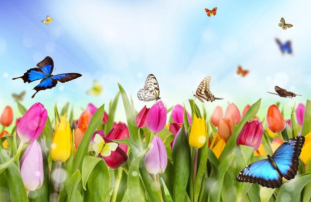 La Buena Vida|¡Adiós invierno, llegó la primavera!